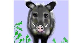 Wild boar drawing by Cec
