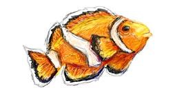 Fish drawing by Paranoia
