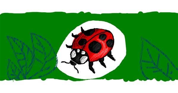 Ladybug drawing by Nan