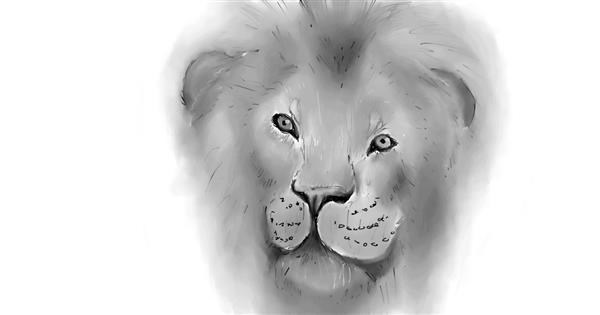 Lion drawing by IceCream