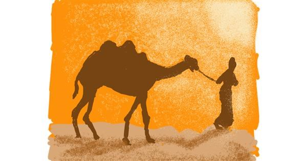 Camel drawing by Cherri