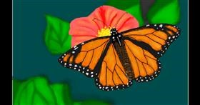 Butterfly drawing by Bicho