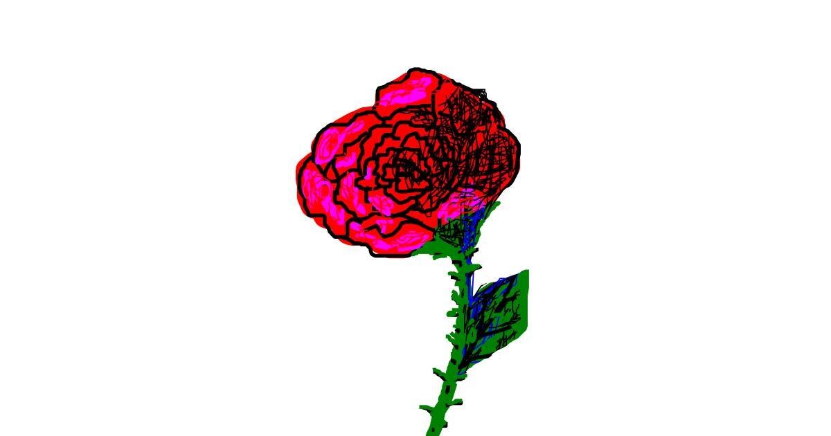 Rose drawing by bloop