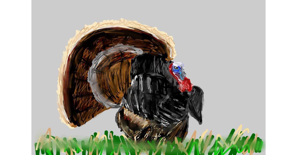 Turkey drawing by Soaring Sunshine