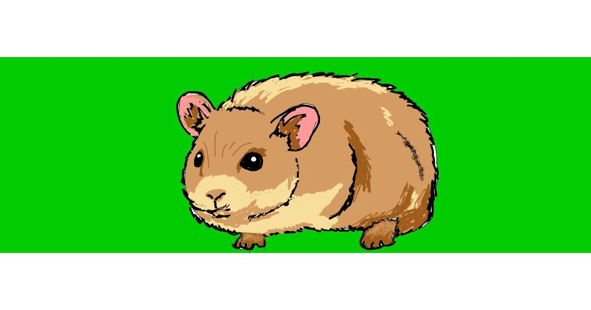 Drawing of Hamster by ThasMe13