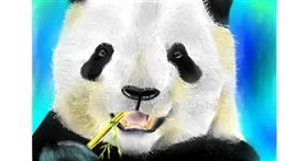 Drawing of Panda by Wizard