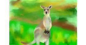 Kangaroo drawing by Abbie