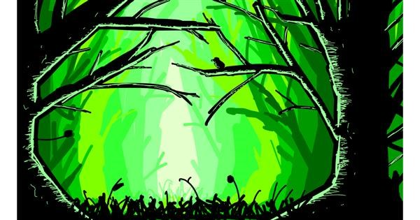 Forest drawing by Sam