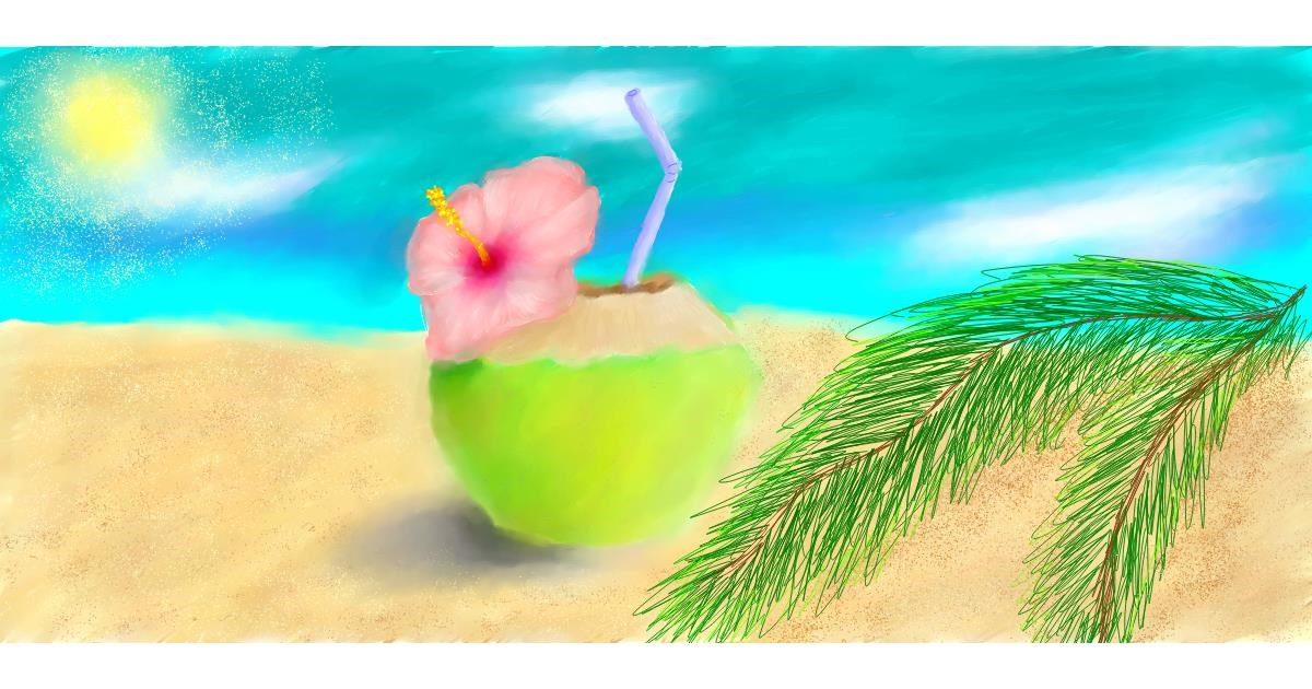 Drawing of Coconut by Sara