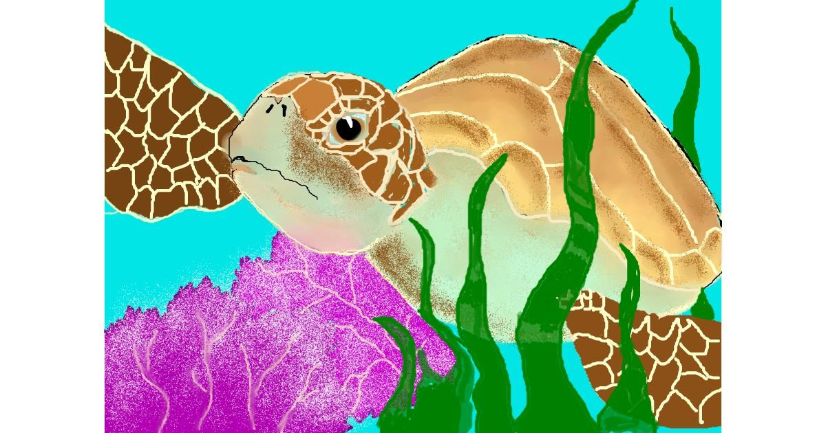 Sea turtle drawing by Debidolittle