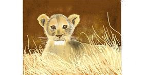 Drawing of Lion by GJP