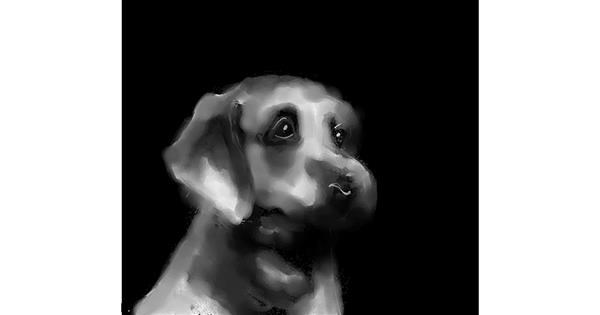 Dog drawing by Joze