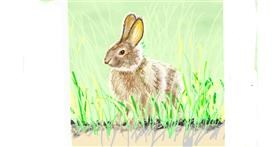 Rabbit drawing by GJP