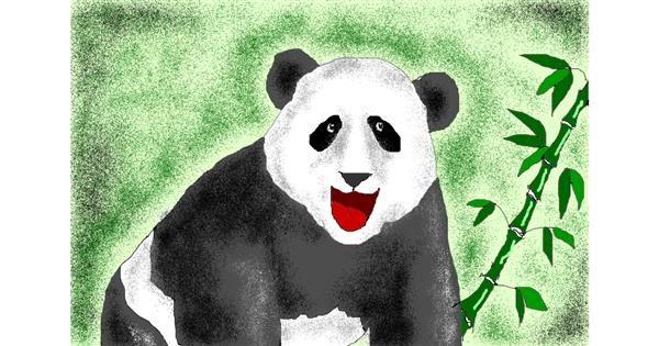 Panda drawing by Jimmah