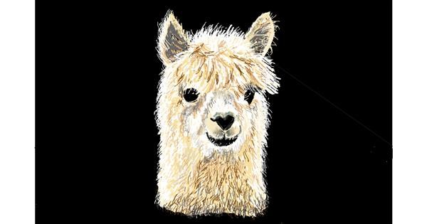 Llama drawing by GJP