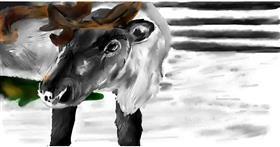Drawing of Reindeer by Effulgent Emerald