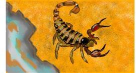 Drawing of Scorpion by SAM AKA MARGARET 🙄