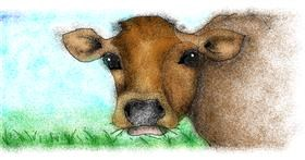 Cow drawing by Anastasia