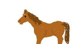Horse drawing by Firsttry
