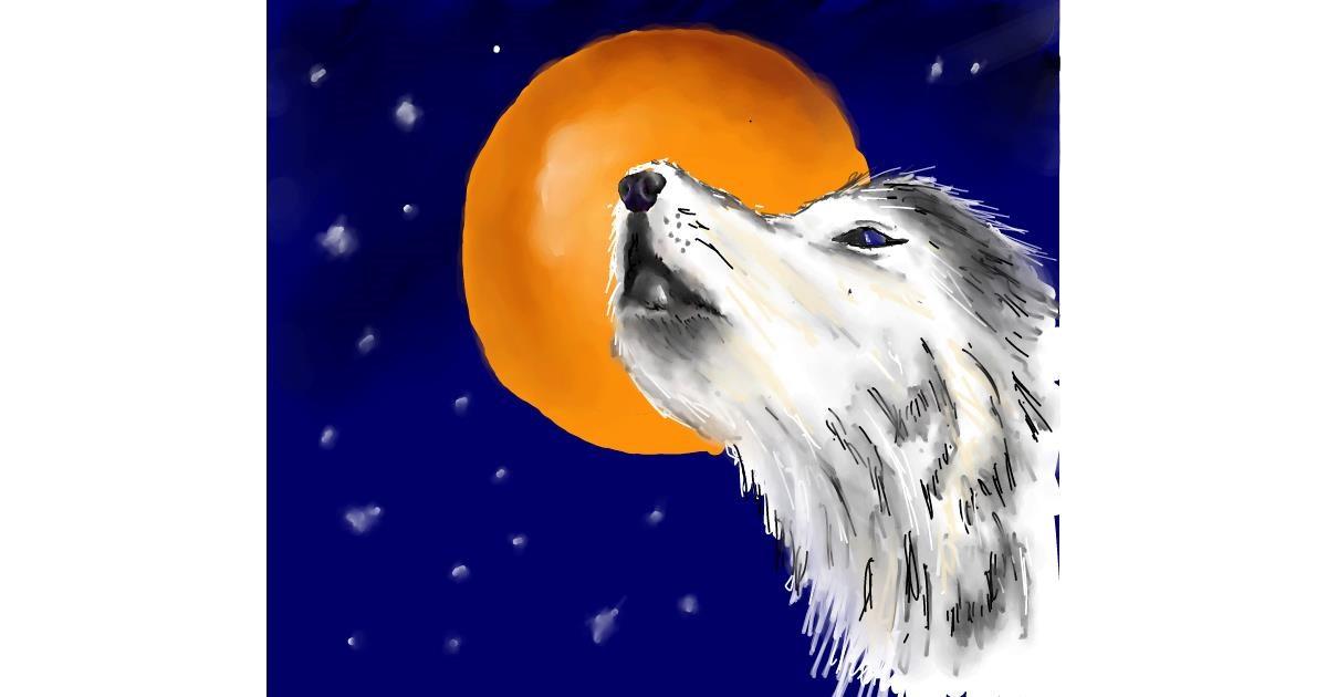 Wolf drawing by JSim