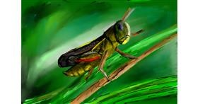 Grasshopper drawing by Soaring Sunshine