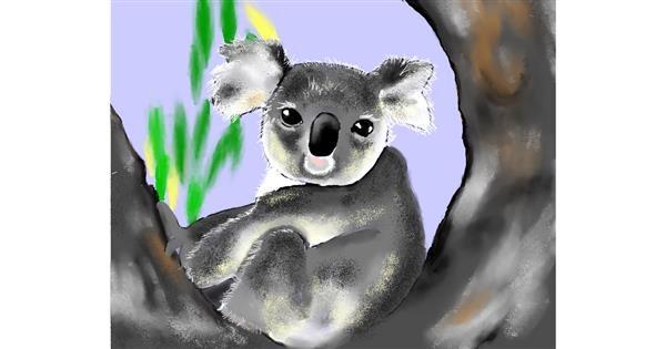 Koala drawing by Cec