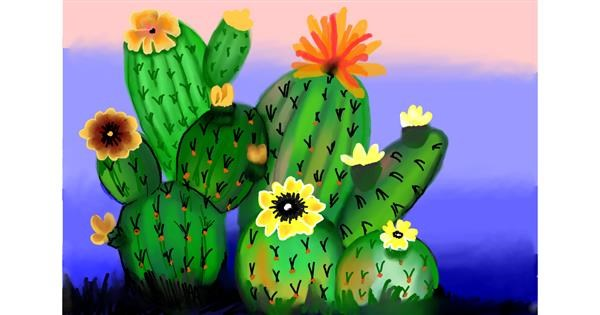 Cactus drawing by Lollipop🍭