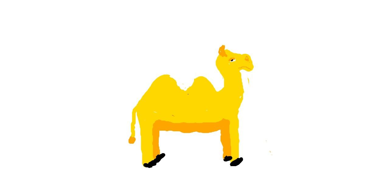 Drawing of Camel by Anonymous