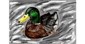 Duck drawing by Soaring Sunshine