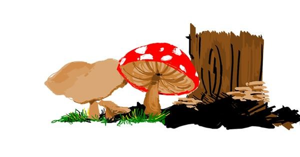 Mushroom drawing by mine
