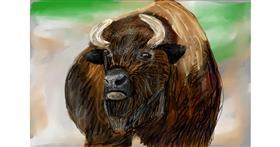 Bison drawing by Soaring Sunshine