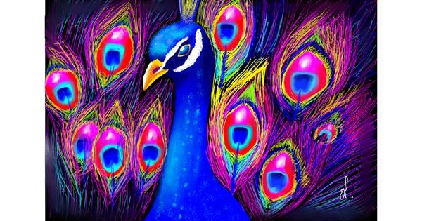 Peacock drawing by OLGI 🌺