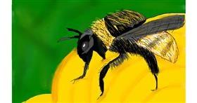 Bumblebee drawing by Vinay Tanakala