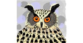 Owl drawing by Thomas