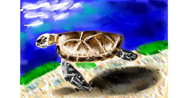 Sea turtle drawing by Soaring Sunshine