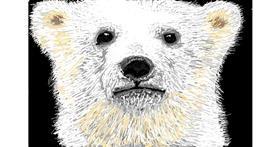 Bear drawing by Calaverita