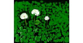 Clover drawing by MZ
