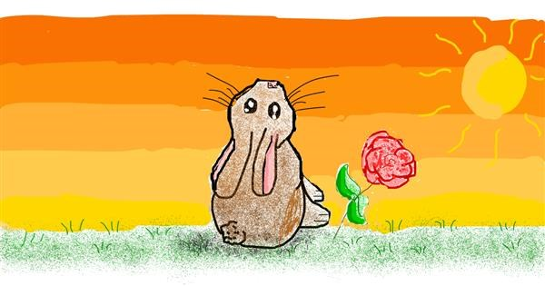 Rabbit drawing by coconut