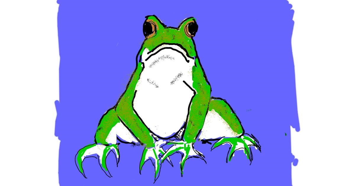 Drawing of Frog by Cherri