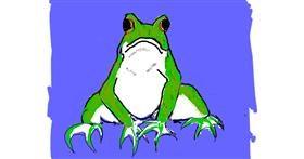 Frog drawing by Cherri