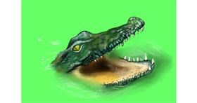 Alligator drawing by Jan