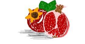 Pomegranate drawing by i bims