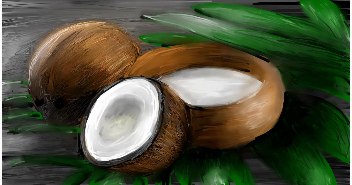 Drawing of Coconut by Soaring Sunshine