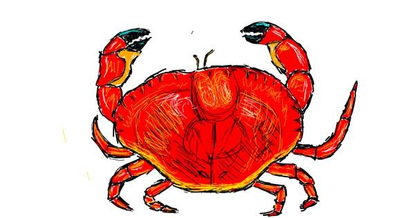 Crab drawing by lenny