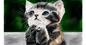 Drawing of Kitten by Soaring Sunshine