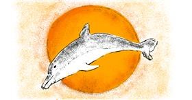 Dolphin drawing by Lsk
