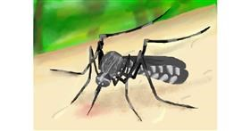 Mosquito drawing by Zi