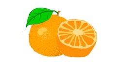 Drawing of Orange by Boople