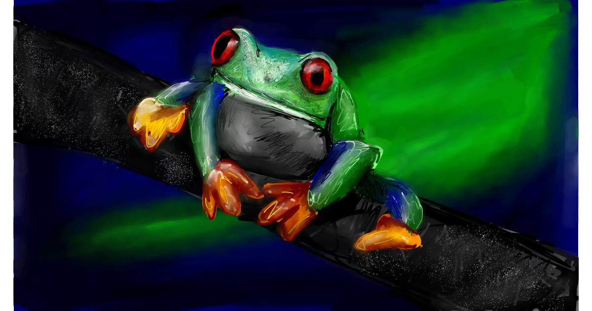 Drawing of Frog by Soaring Sunshine