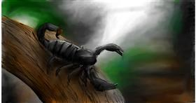 Drawing of Scorpion by Soaring Sunshine